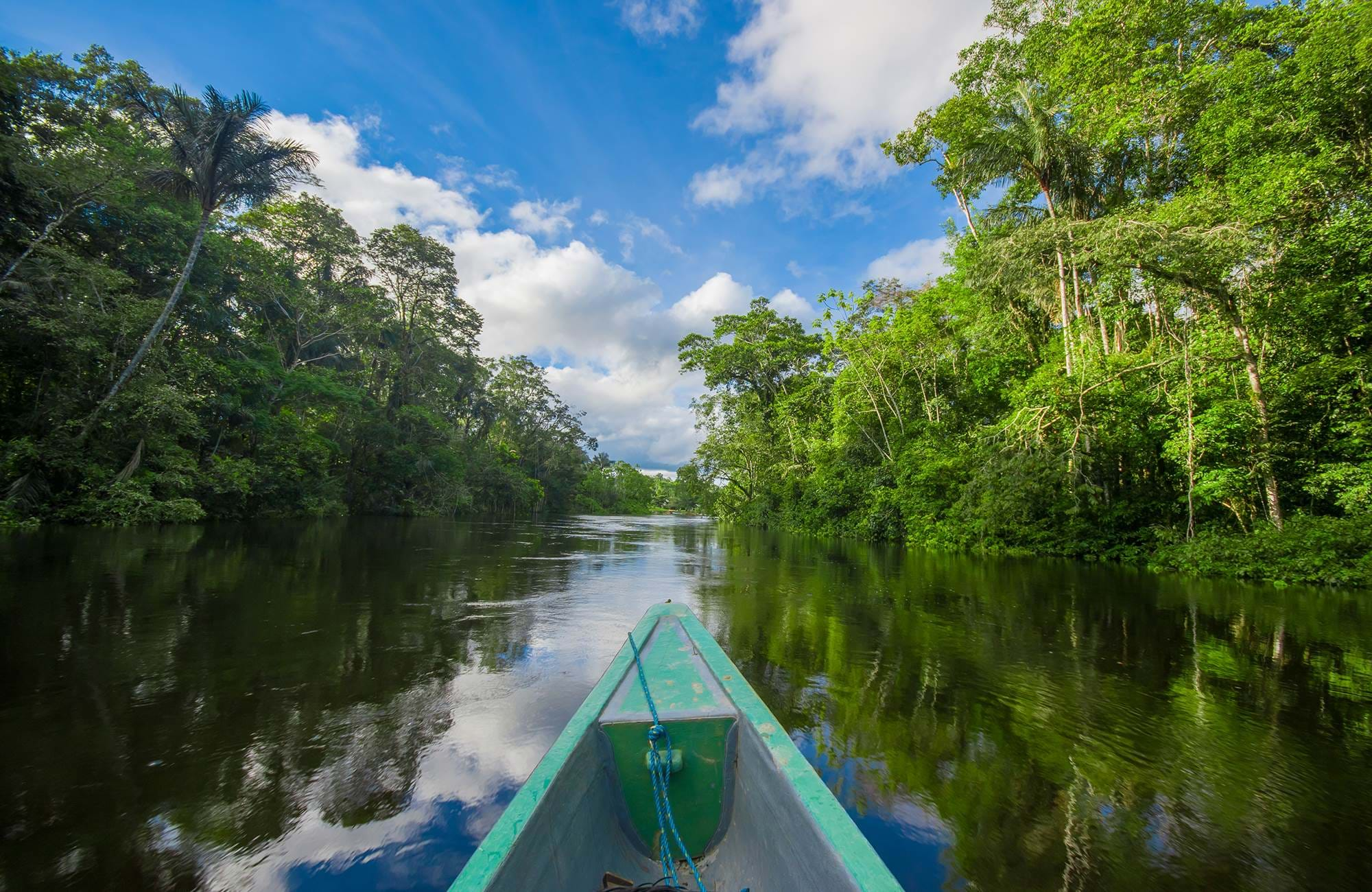 amazon-rainforest-ecuador-cuyabeno-national-park-boat-cover