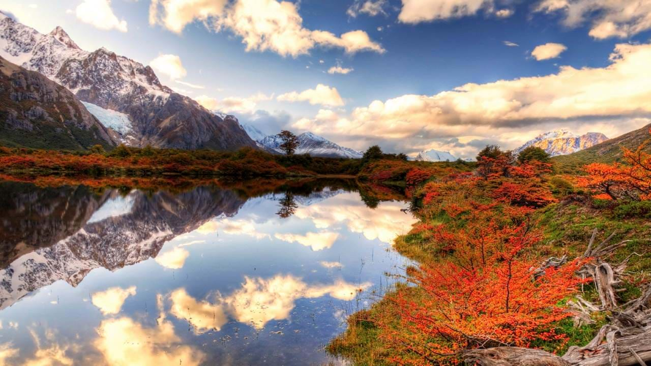 argentina-patagonia-valle-de-chalten-fall-foliage-cover