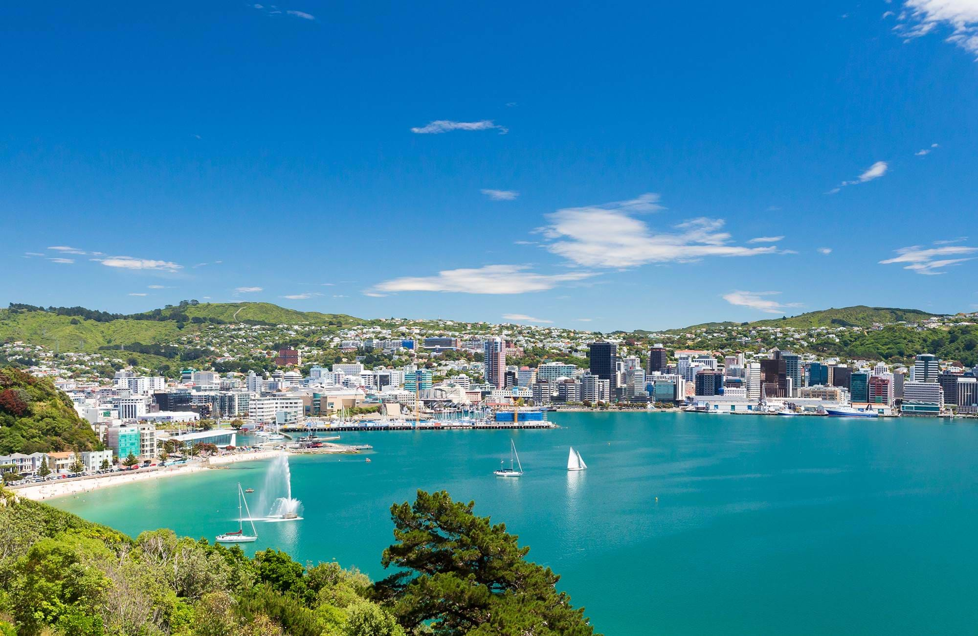 new-zealand-wellington_from the water