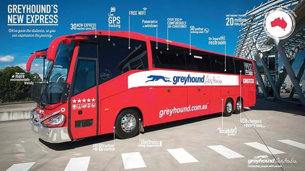 greyhound-australia-bus_11